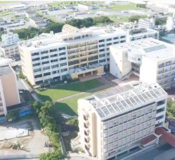 沖繩國際大學