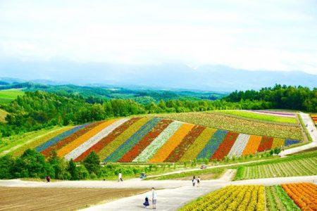 2006北海道Farm Stay